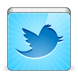 social twitter bird icon