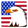 Independence-Day-Eagle icon