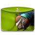 Folder-Nature-Insect icon