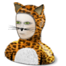 Cat-costume icon
