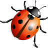 http://icons.iconarchive.com/icons/ergosign/free-spring/96/ladybird-icon.png