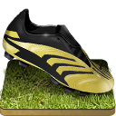 Soccer-shoe-grass icon
