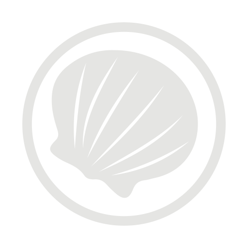 Molluscs allergy grey icon