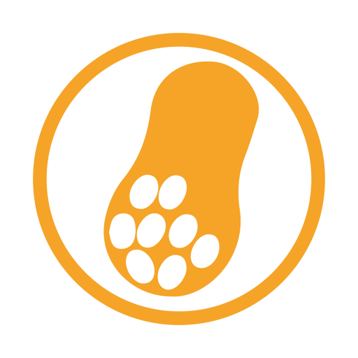 Peanut allergy amber icon