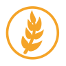 Wheat-allergy-amber icon