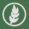 Wheat-allergy-grey icon