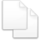 Action copy icon