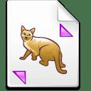Mimetype pk icon