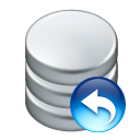 data undo icon