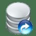Data-redo icon
