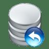 Data-undo icon