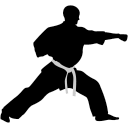 karate punch icon