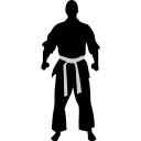 Karate ready icon