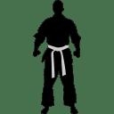 Karate-ready icon
