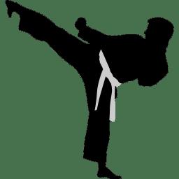 karate highkick icon