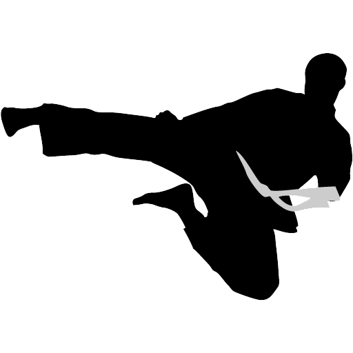 Karate flyingkick icon