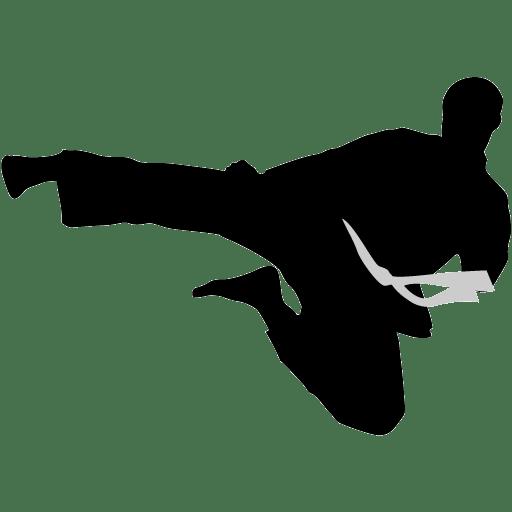 Karate-flyingkick icon