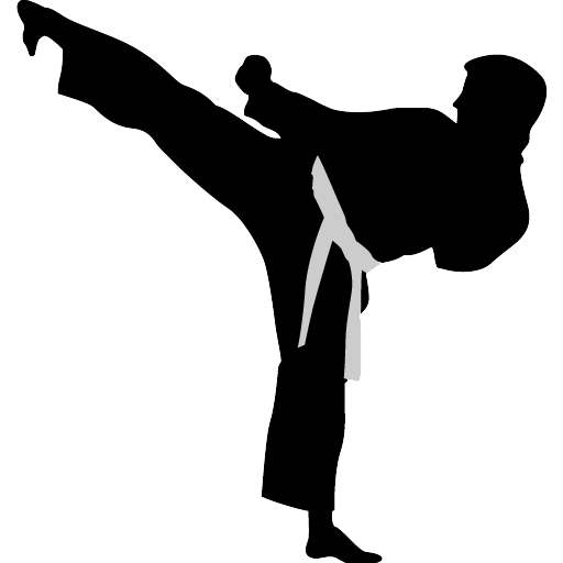 Karate highkick icon