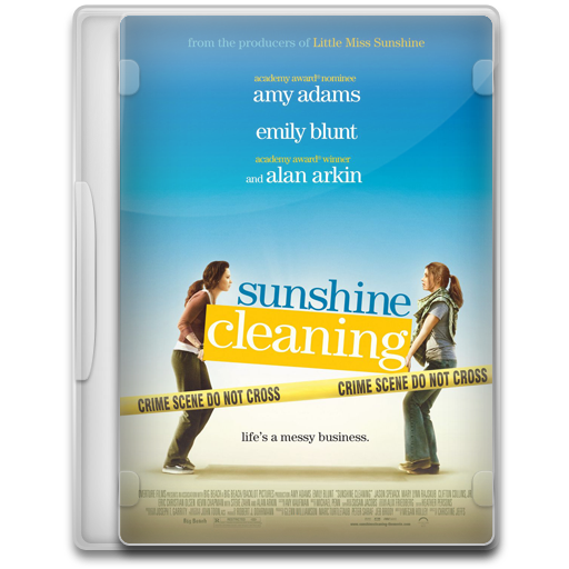 Sunshine-Cleaning icon