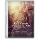 Aint Them Bodies Saints icon