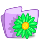 Folder Flower Green icon