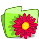 Folder Flower Red icon