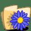 Folder Flower Blue icon