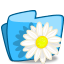 Folder Flower Camomile icon