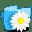 Folder-Flower-Camomile icon