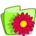 Folder-Flower-Red icon