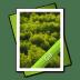 GIF-File icon