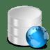 Web-Database icon