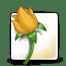 Software-adobe-illustrator icon
