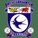Cardiff City icon