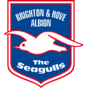 Brighton Hove Albion icon