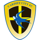 Cardiff City icon