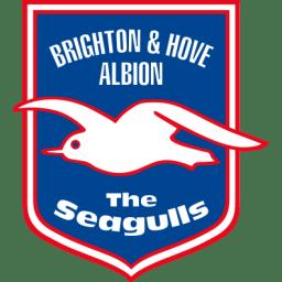 Brighton Hove Albion icon
