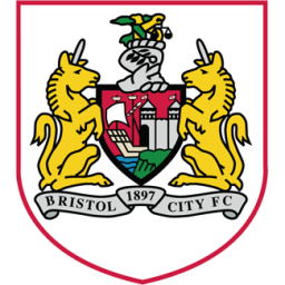 Bristol City icon