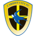 Cardiff-City icon