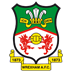 Wrexham-AFC icon