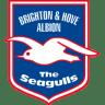 Brighton-Hove-Albion icon