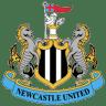 Newcastle-United icon