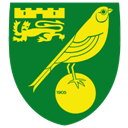 Norwich-City icon