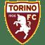 Torino icon