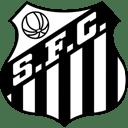 Santos icon