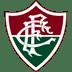 [PREMIOS PARA O PERFIL] Escolha o seu aqui  Fluminense-icon