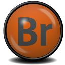 Adobe Bridge CS 5 icon