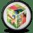 Premiere Elements 4 icon