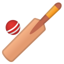 52740-cricket-game icon