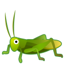 22309-cricket icon